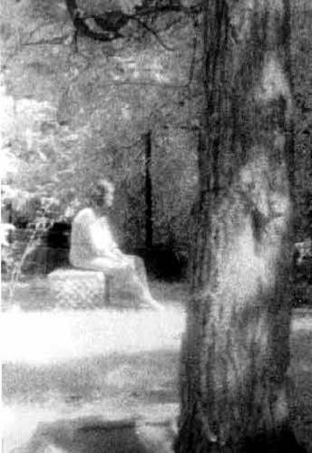 10 Most Famous Ghost Pictures and Their Story - The Lady of Bachelor's Grove
