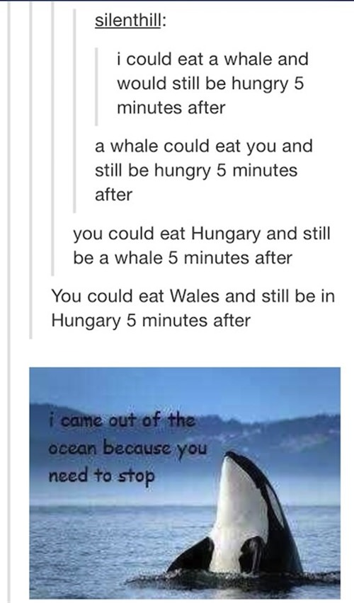 I could eat a whale and still be hungry