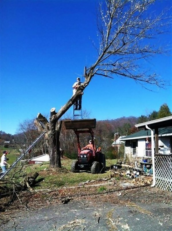 Dangerous way of cutting tree