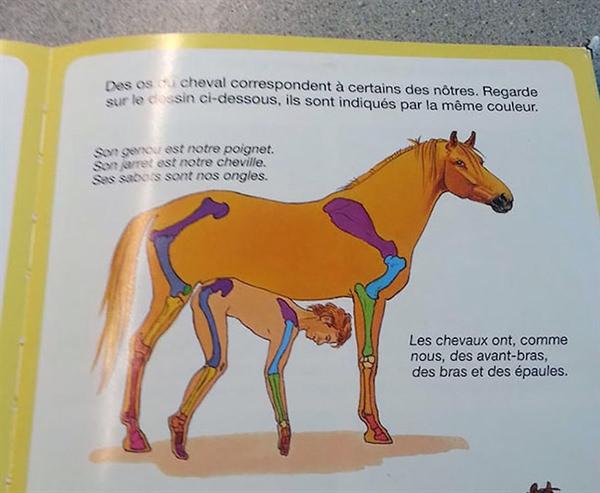 Just a horseman