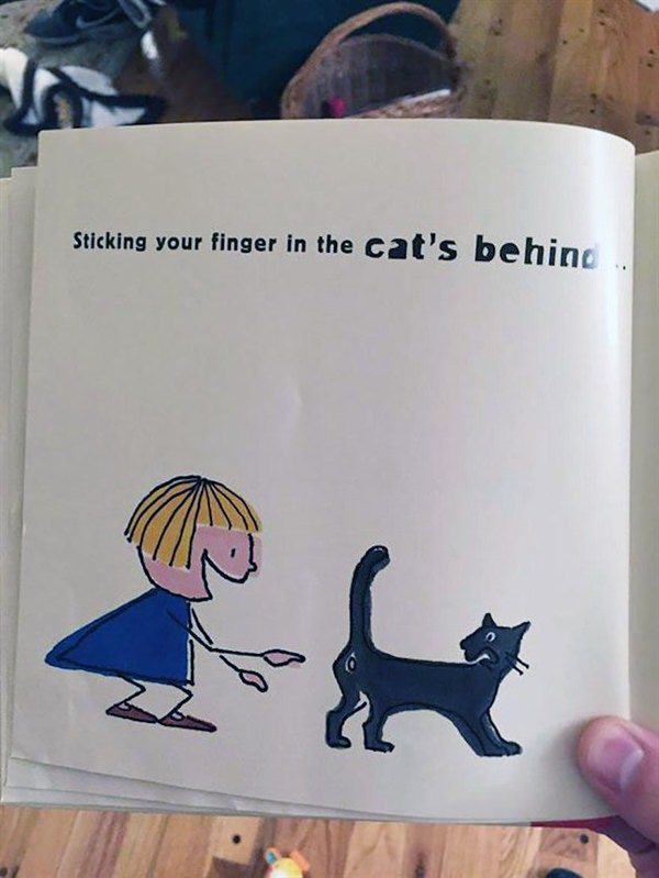Sticking your finger in the cat