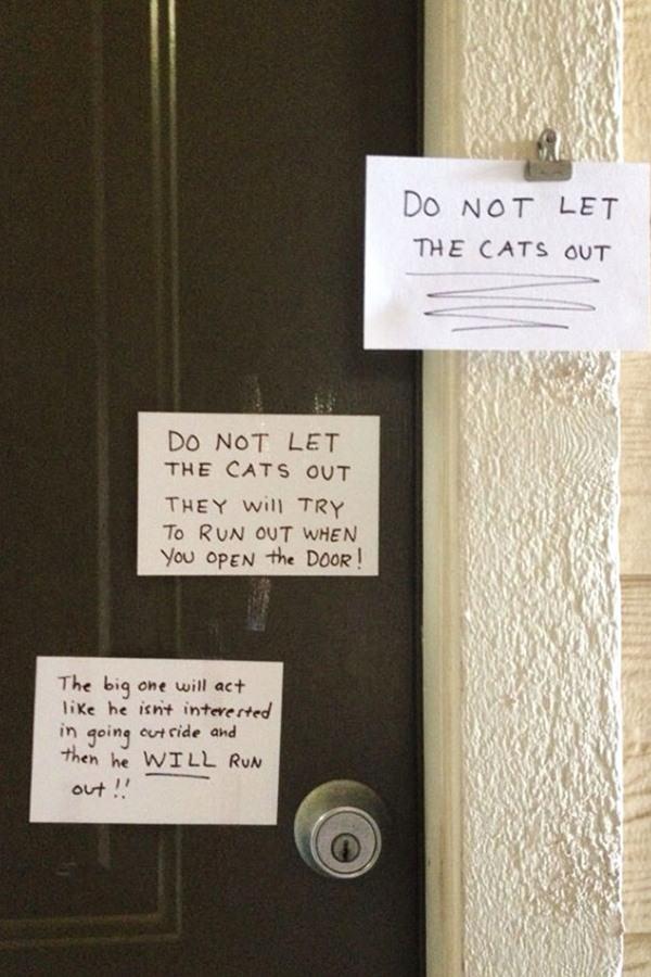 funny-neighbor-note-7