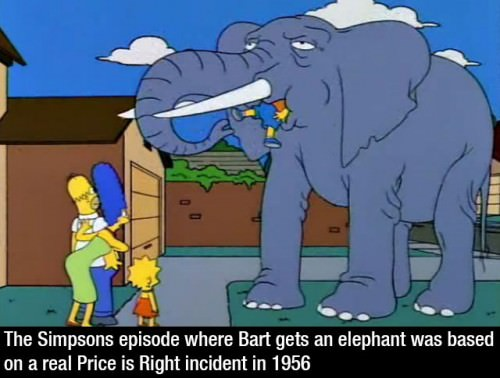 simpsons-fact-083115-5