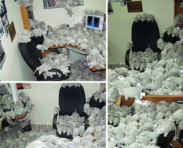 office-prank-100315-18