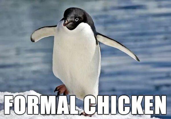 alternate-animal-names-122115-23
