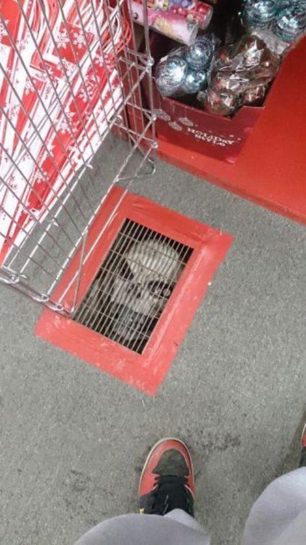 creepy-picture-011016-13