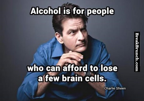 Alcohol is for people who can afford to lose a few brain cells