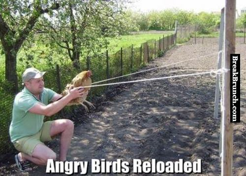 How to play angry bird