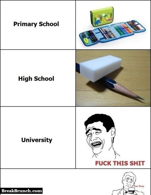 Different stages of education
