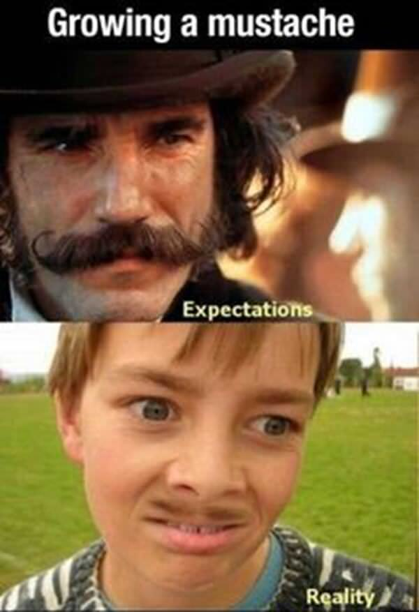 expectation-vs-reality-20160424-12
