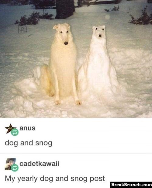 Dog and snog