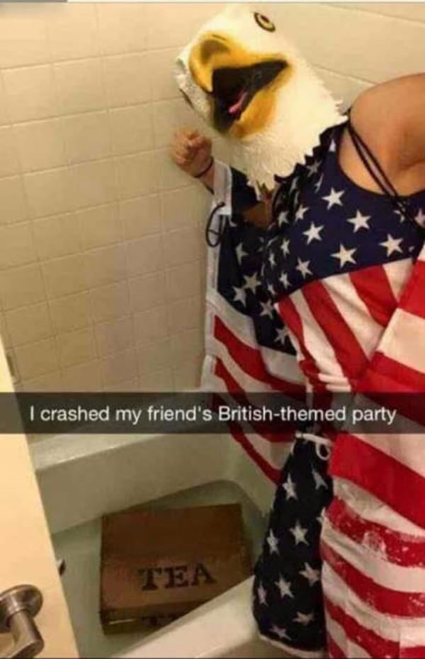 funny-snap-cat-20160424-2