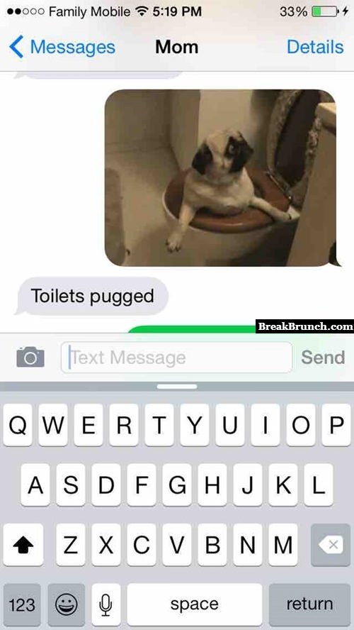 Toilet pugged