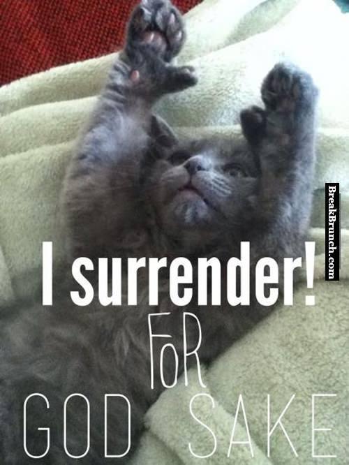 i surrender for god sake