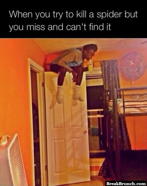 When you are trying to kill a spider