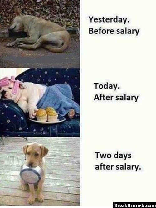 3 stages after getting paid