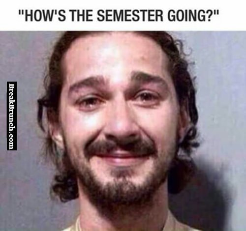 How is semester going