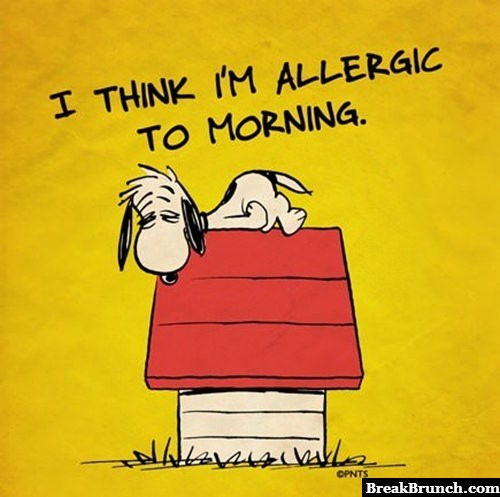 I think i am allergic to mornings