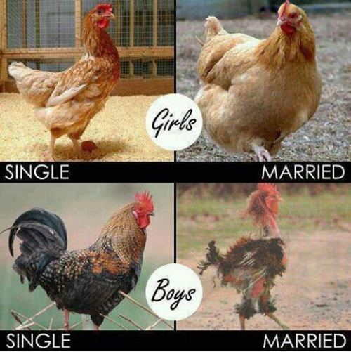 The effects of marriage on guys and girls