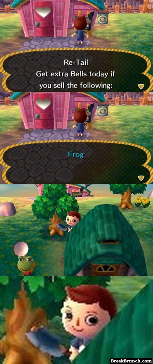 What Animal Crossing is really about