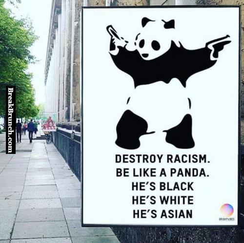 Destory racism, be like a panda