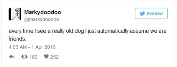 dog-lovers-20151001-14