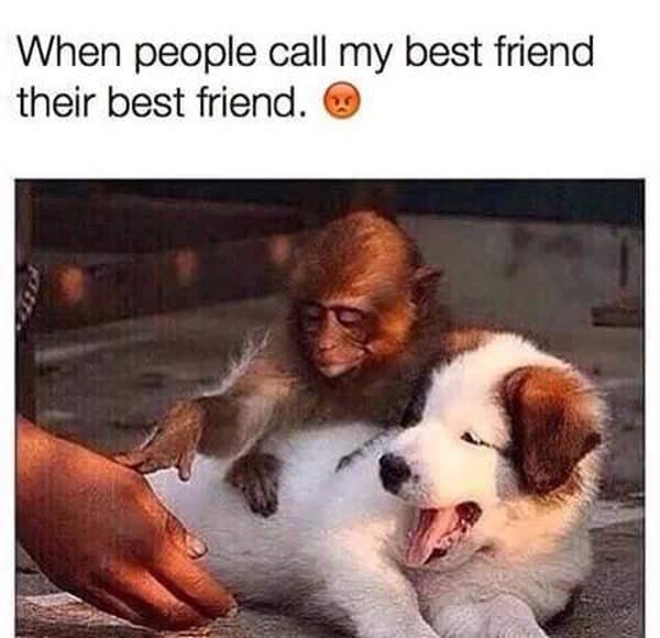 funny-meme-pic-20151005-12