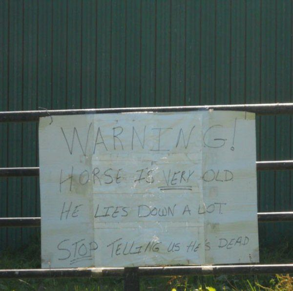 funny-sign-20151008-14
