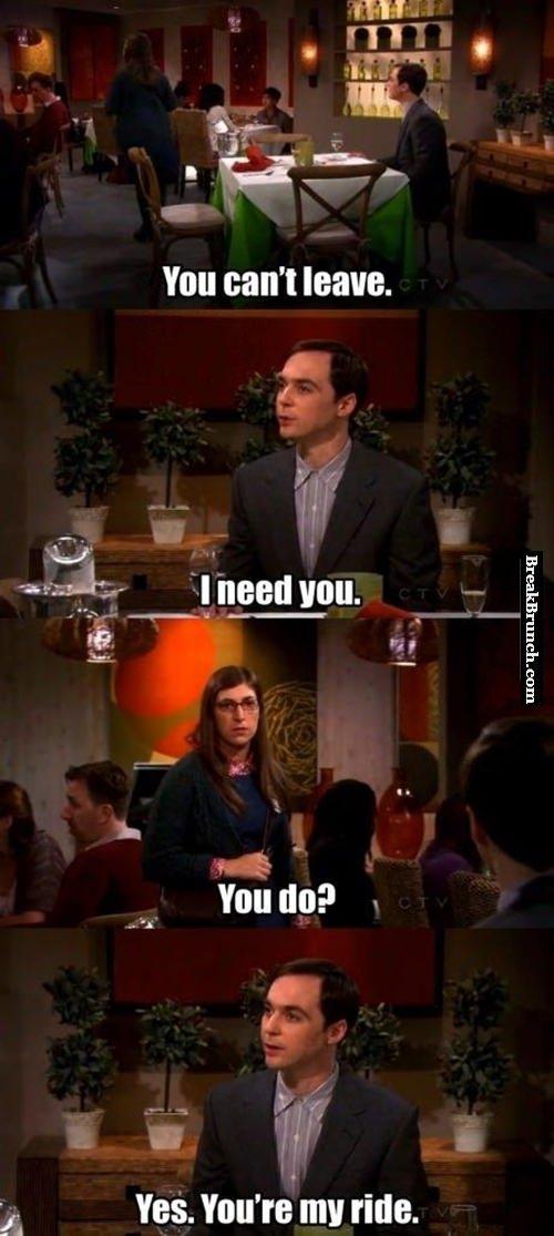 Sheldon trolling level