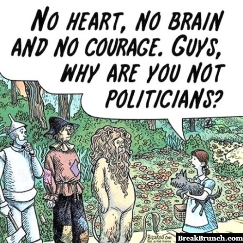 Why are you not politicians