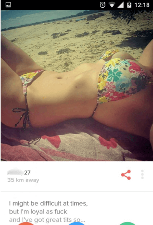 funny-tinder-profile-20151223-2