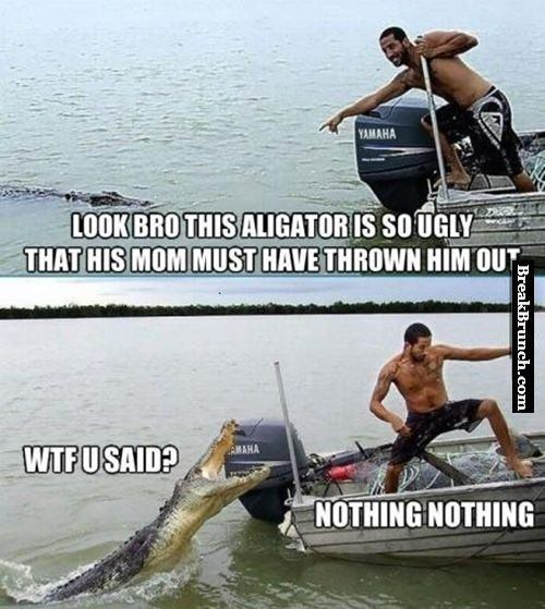 I am so sorry aligator