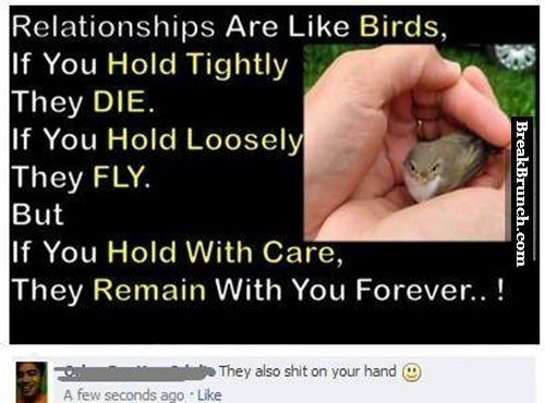 Relationships are like birds