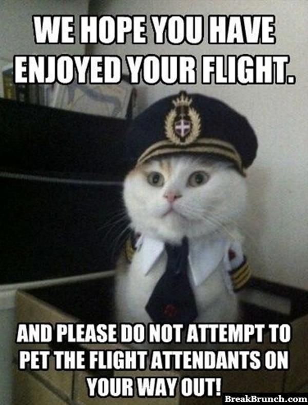 We hope you have enjoyed your flight