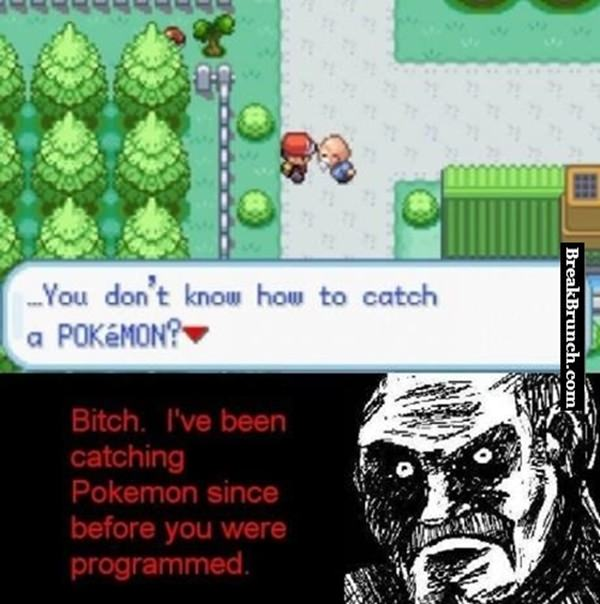 I don't need you to teach me how to catch pokemon