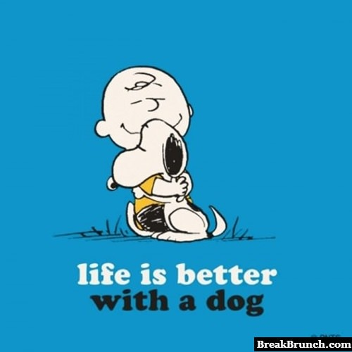 Life is better with dog
