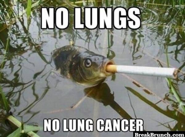No lung so no lung cancer