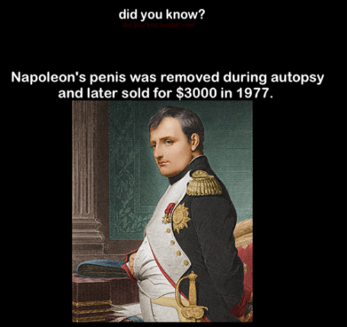 napoleon-penis-was-removed-funny-did-you-know-picture