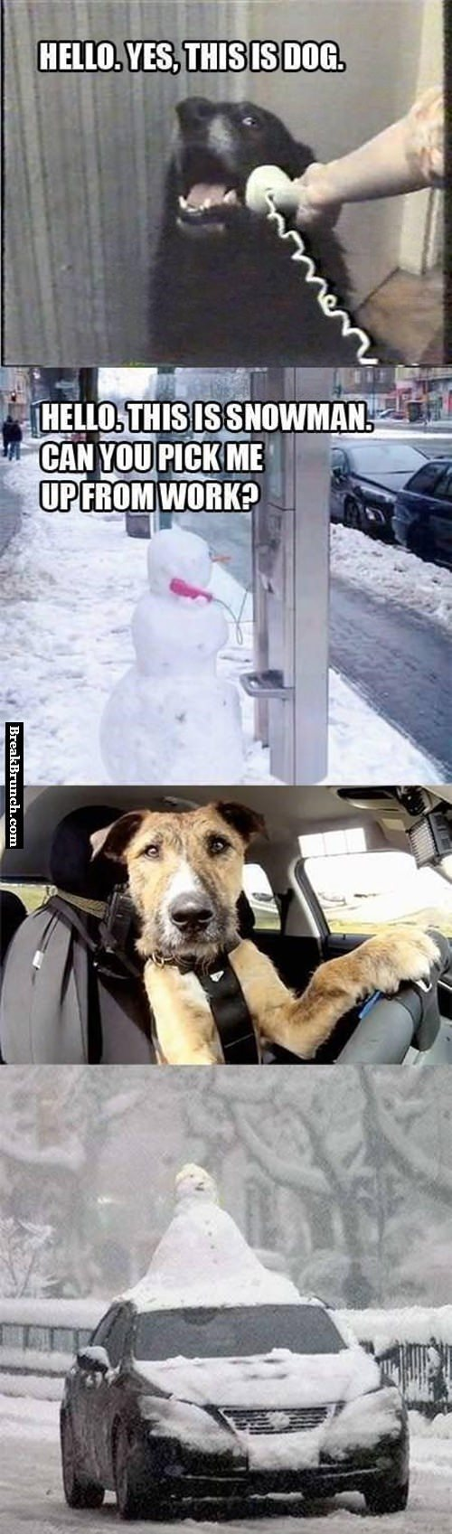 dog-is-that-you-snowman-pick-from-work