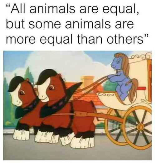 animals-are-all-equal-081218