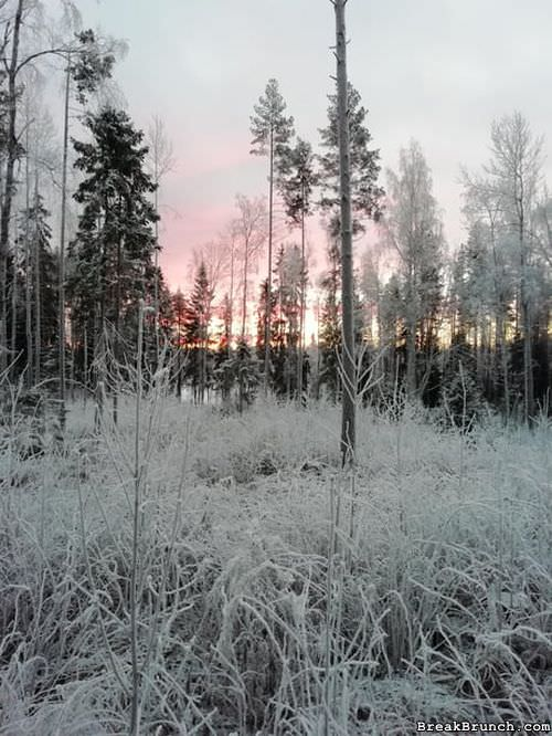 sunrise-in-finland-082717094