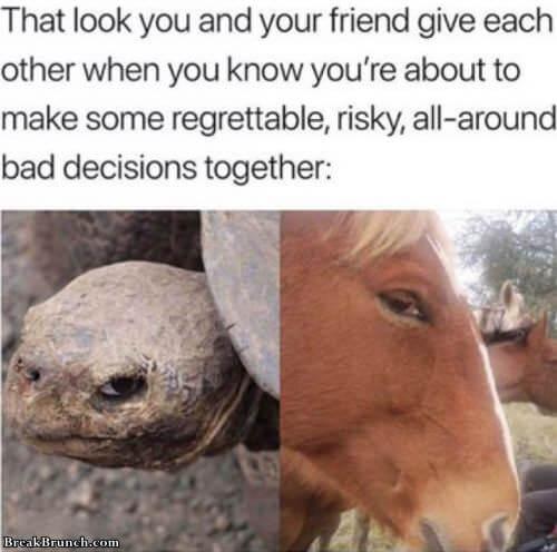 bad-decision-look-0916180223
