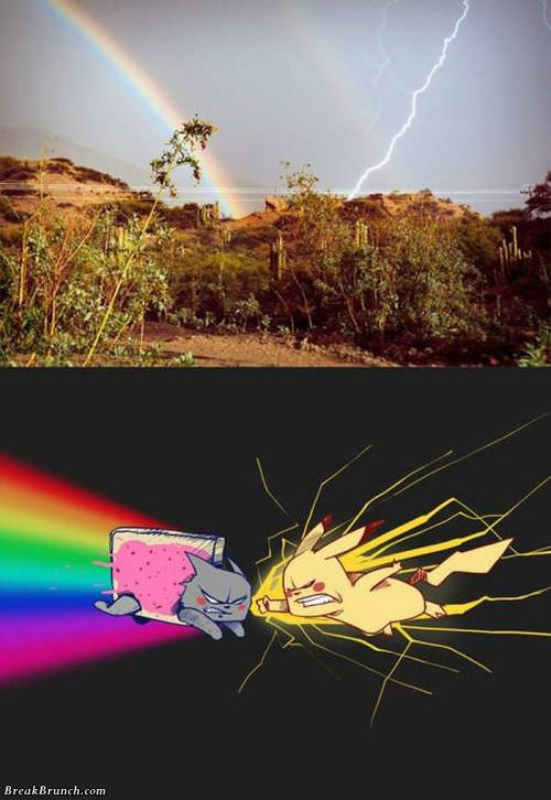 nyan-cat-vs-pikachu-pokemon-091118