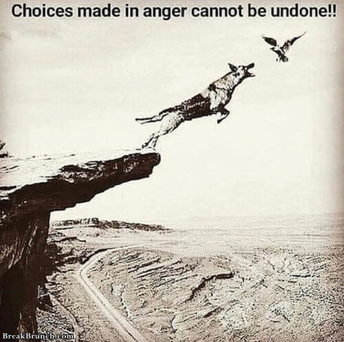 choice-made-in-anger-cannot-be-undone-10091028