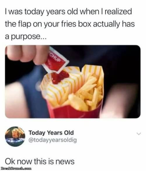 today-years-old-flap-fries-box-1006190608