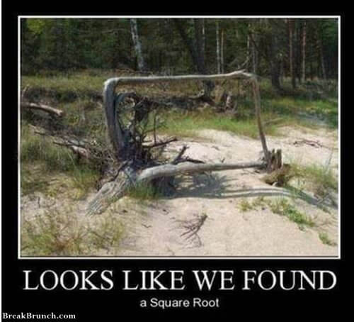 we-found-square-root-1006190608