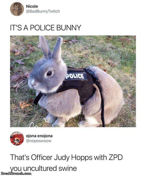 police-bunny-1127190855