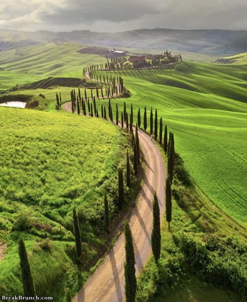 tuscany-taly-bearutiful-funny-picture-1028191043