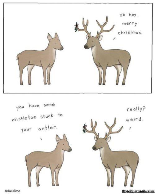 30 Cute Animal Cartoon