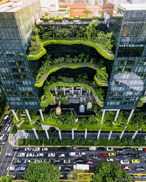 green-building-singapore-0109191243